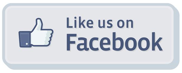 Facebook para empresas. Cómo sacarle todo el partido a tu Fan Page