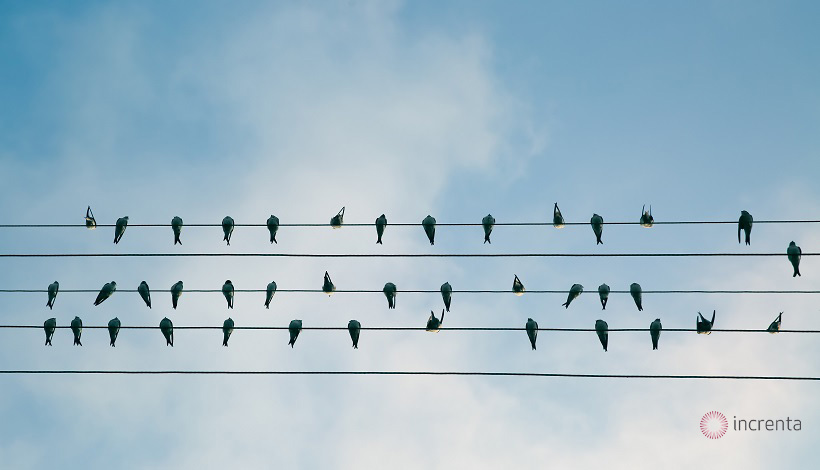 ¿Cómo conseguir clientes con estrategias de lead nurturing?